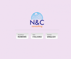 consulting-nc